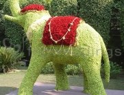FNP-Floral-decoration-12