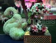 FNP-Floral-decoration-3