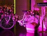 wedding-props-cycle