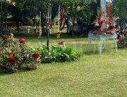 wedding-props-garden