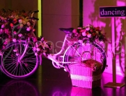 wedding-props-cycle